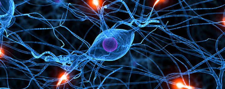 Celiachia e neuropatia periferica: una possibile relazione